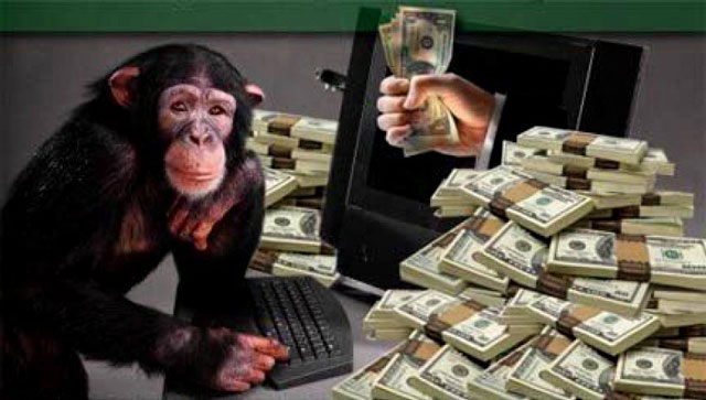 stock-market-monkey-story
