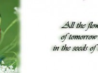 flowers of tomorrow in todays seed