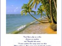 life, sea and success