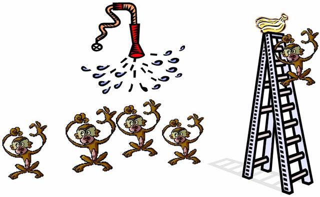 monkey-banana-water-spray-paradigm
