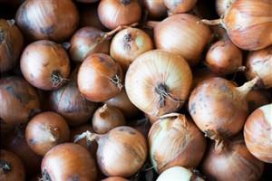 onions-pull-bacteria