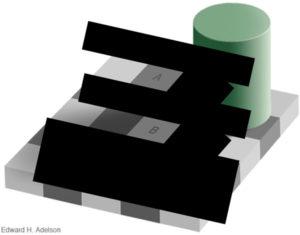 optical-illusion-black-white-boxes-6