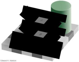 optical-illusion-black-white-boxes-8